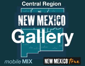 NMTrue-Mobile-Central